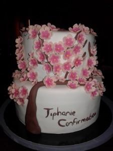 cake design cerisier chinois