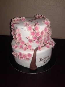 gâteau cerisier chinois
